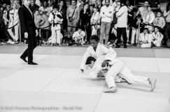dlm-pictures-photographies-tournoi-international-de-harnes-2016-01619